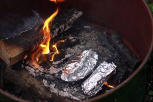 Campfire Foil Cooking Guide