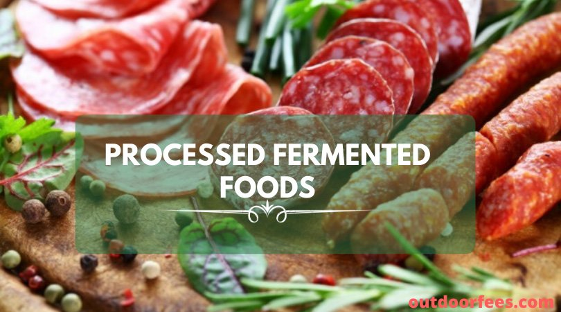 Processed Fermented Foods